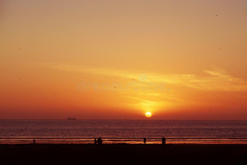 华美的日落有看法向海 库存照片