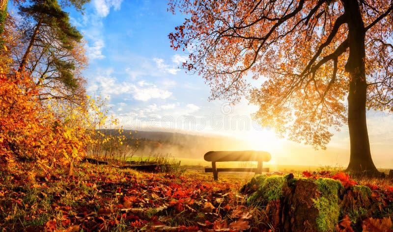 华美的秋天风景 免版税库存图片