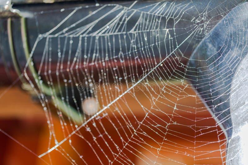 华美的蜘蛛网接近的看法在棕色木背景的 免版税库存照片