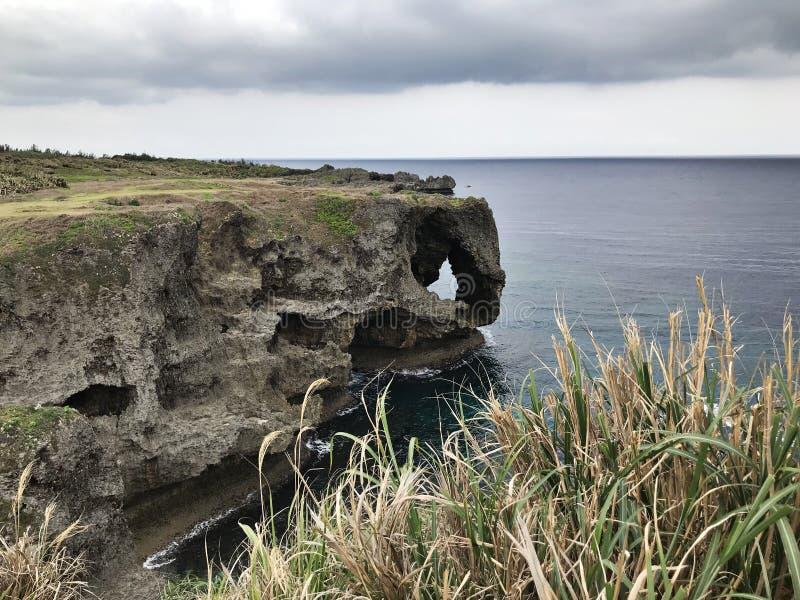 卓著的峭壁和鲜绿色海洋使目炫视图海角的Manzamo在日本 免版税图库摄影