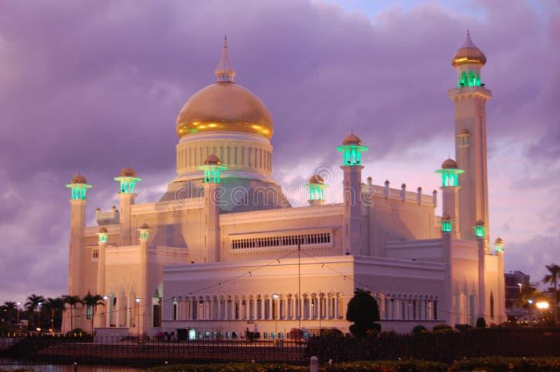卓著的桃红色和紫色日落反对城市清真寺沙巴的,亚庇,马来西亚在婆罗洲的海岛上 免版税库存图片