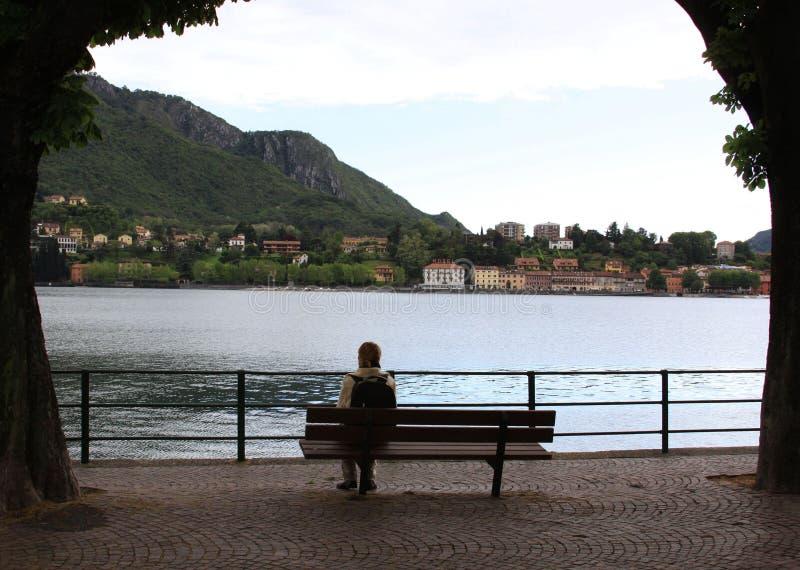 单独在湖附近的长凳 库存图片