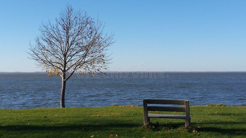 单独在湖 库存图片