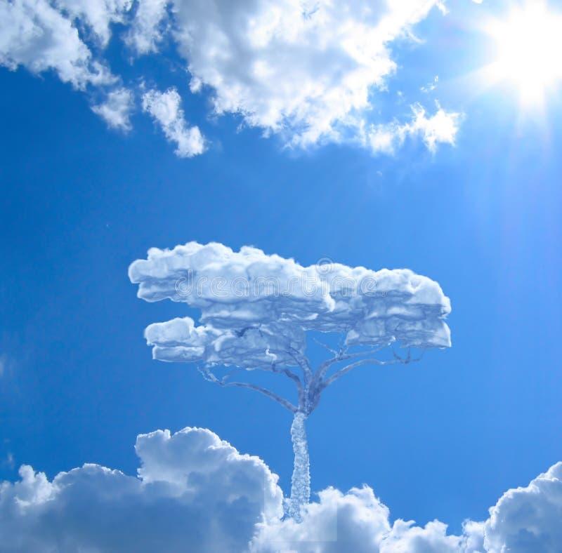 单独天空结构树 库存图片