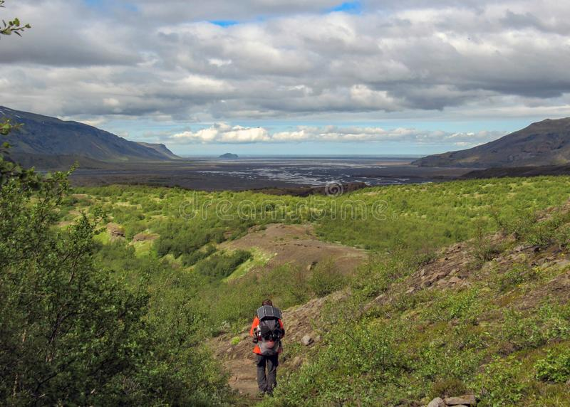 单独徒步旅行者人到绿色冰岛谷里狂放的赞赏的火山的风景  Laugavegur供徒步旅行的小道,暑假 免版税库存照片