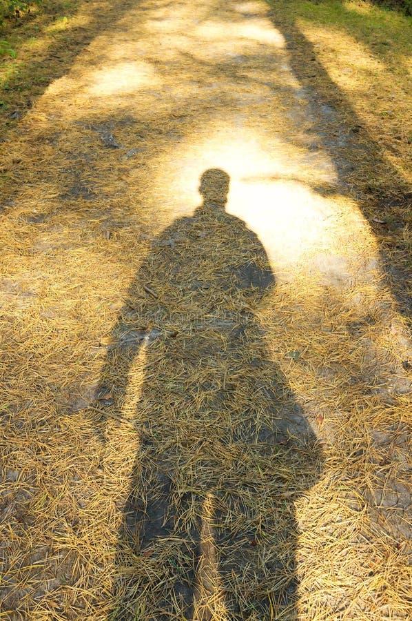 单独站立在森林里的年轻人的阴影 免版税库存照片