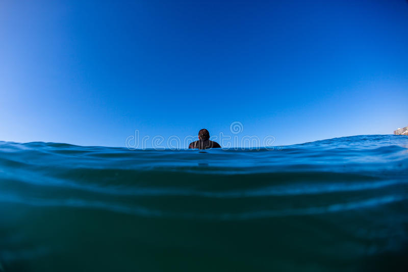 单独等待的海洋冲浪者   库存图片