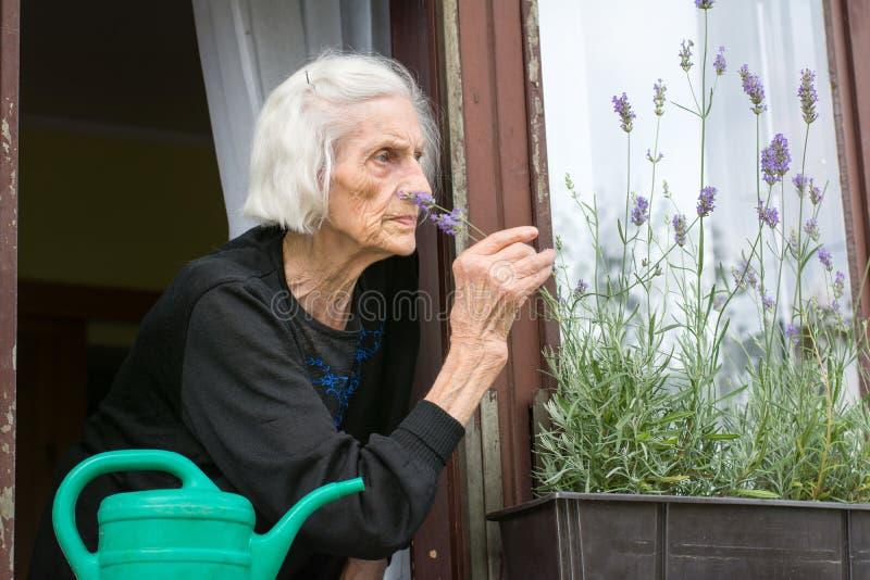 单独资深妇女房子窗口的 图库摄影