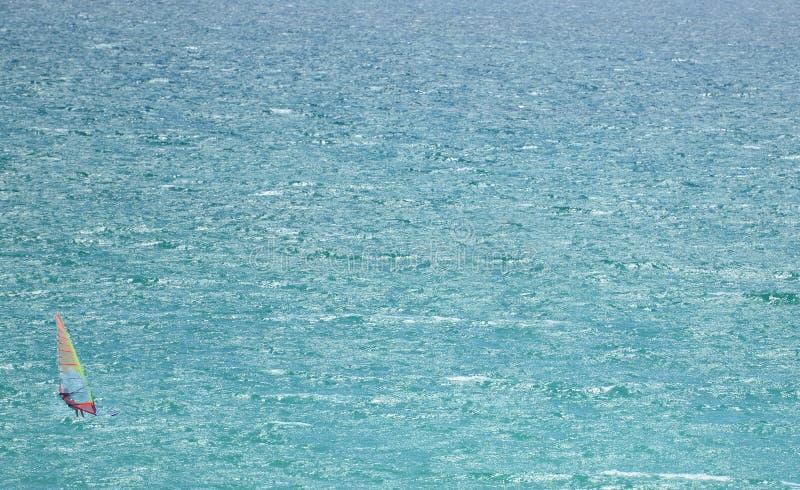 单独风帆冲浪者公海的 免版税库存照片