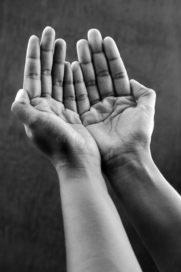 单色图象的祈祷的手 免版税库存照片