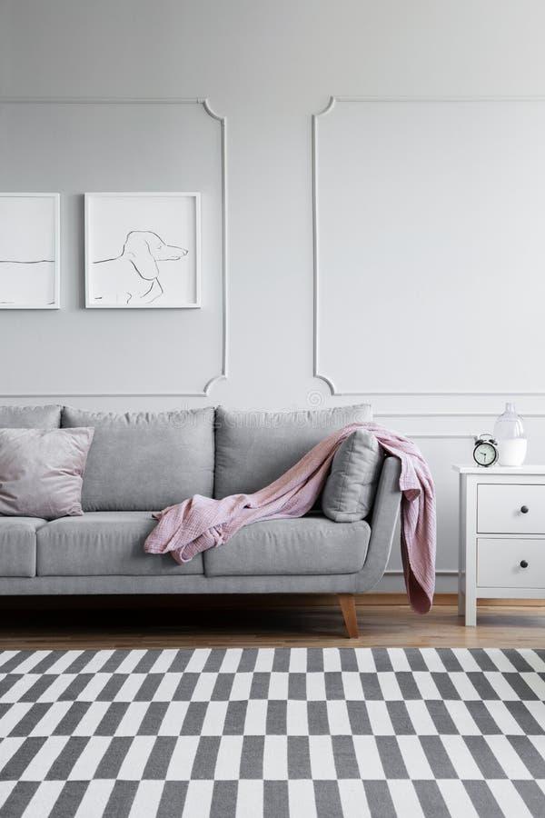单色客厅垂直的看法有灰色和白色家具的和在地板上的被仿造的地毯 库存照片