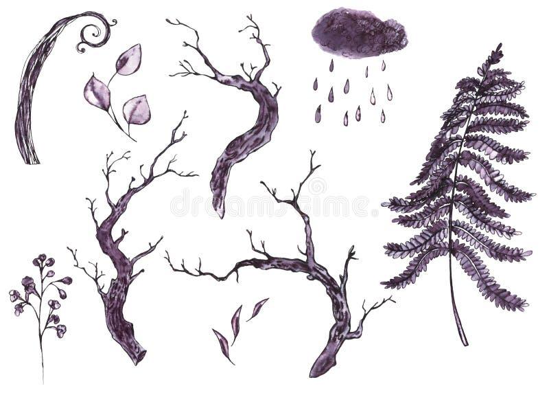 单色水彩自然套干燥树枝,叶子, 库存例证