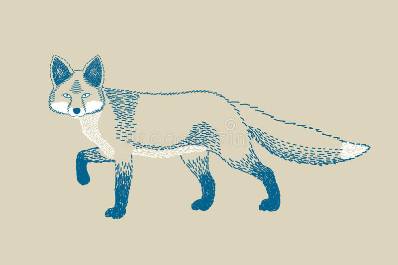 单色狐狸图画 库存照片