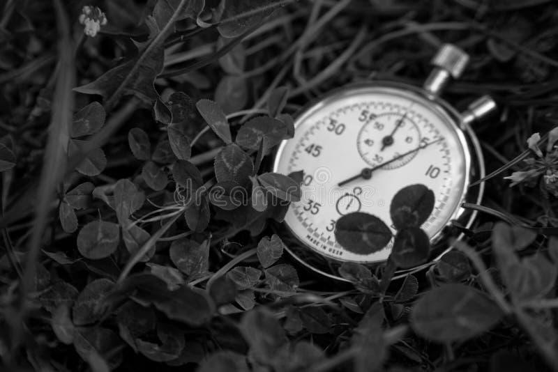 单色秒表在绿草,嬉戏概念说谎 免版税库存图片
