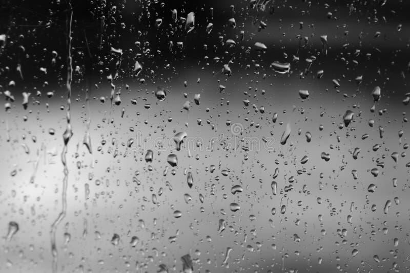 单色雨珠 免版税库存图片
