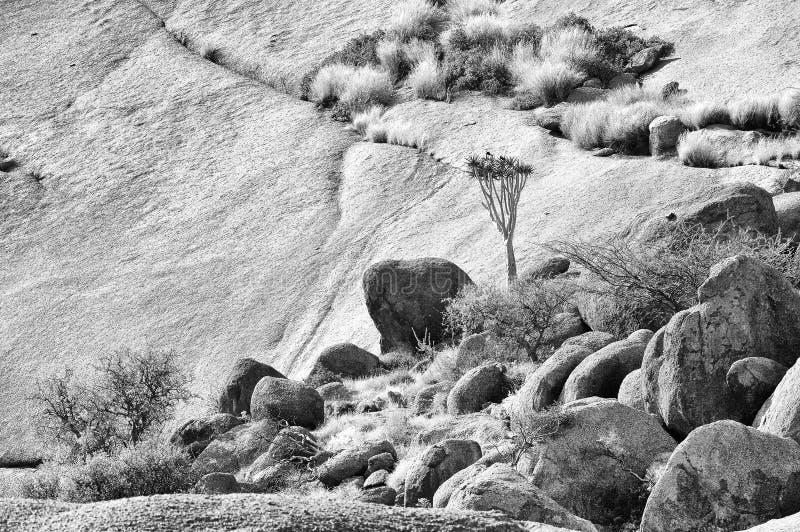 单色风景, Spitzkoppe,纳米比亚 免版税库存图片