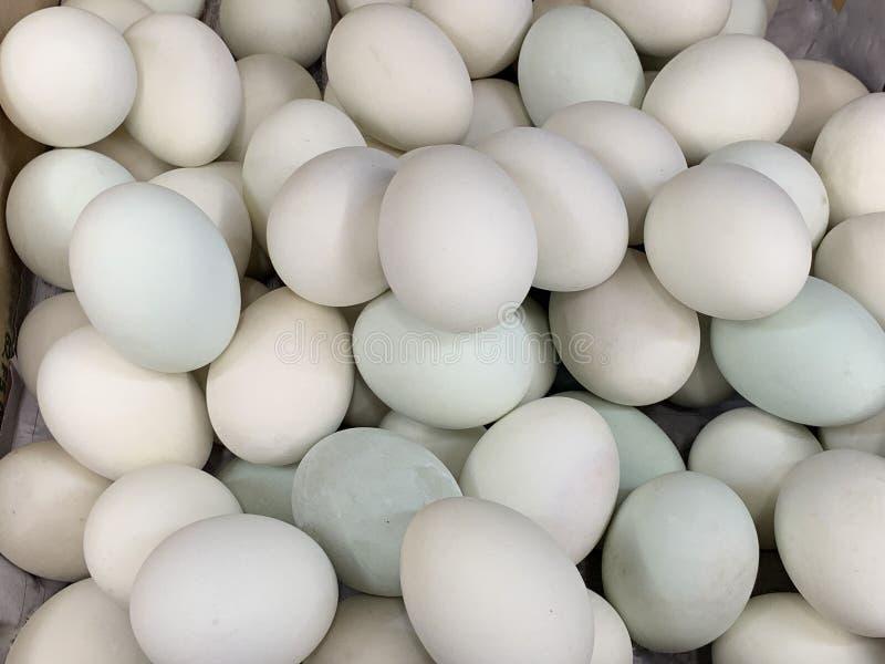 卖在市场上的新鲜的鸭子鸡蛋 库存照片