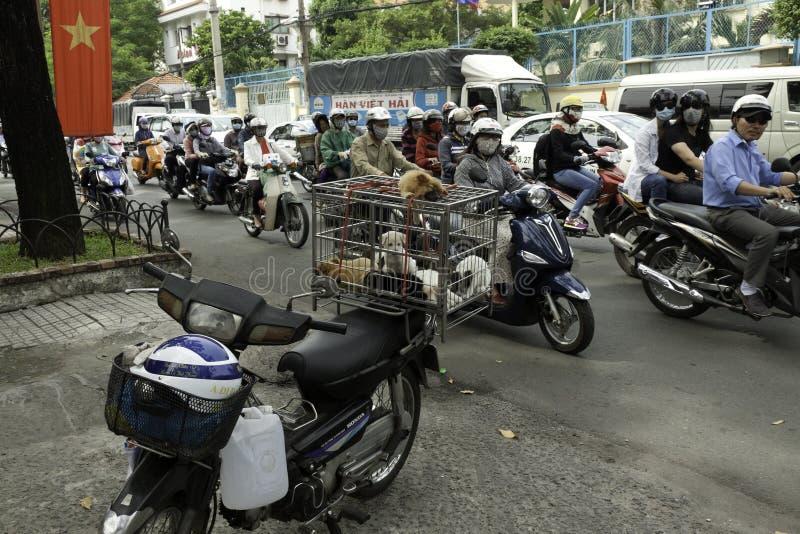 卖在被超载的摩托车的小犬座在西贡街道  免版税库存图片