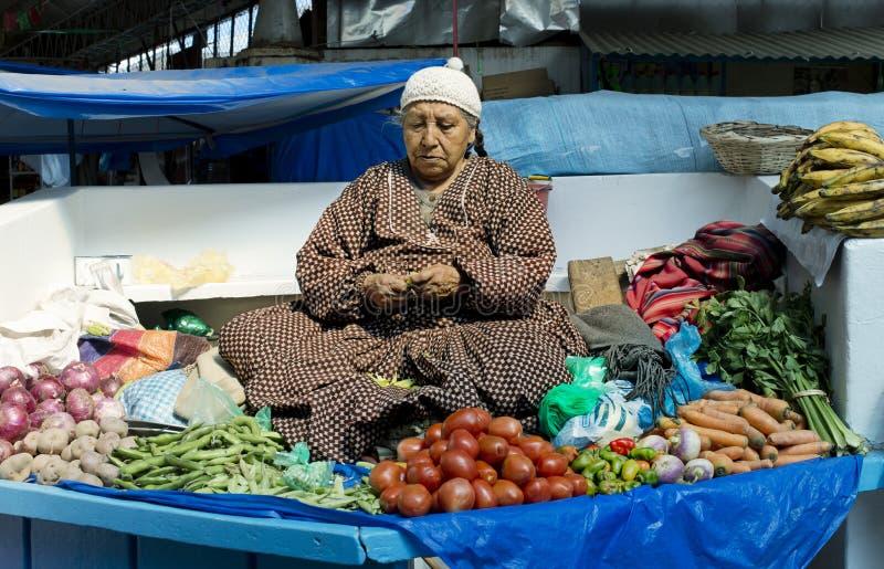 卖菜的土产玻利维亚的妇女在市场上 库存照片