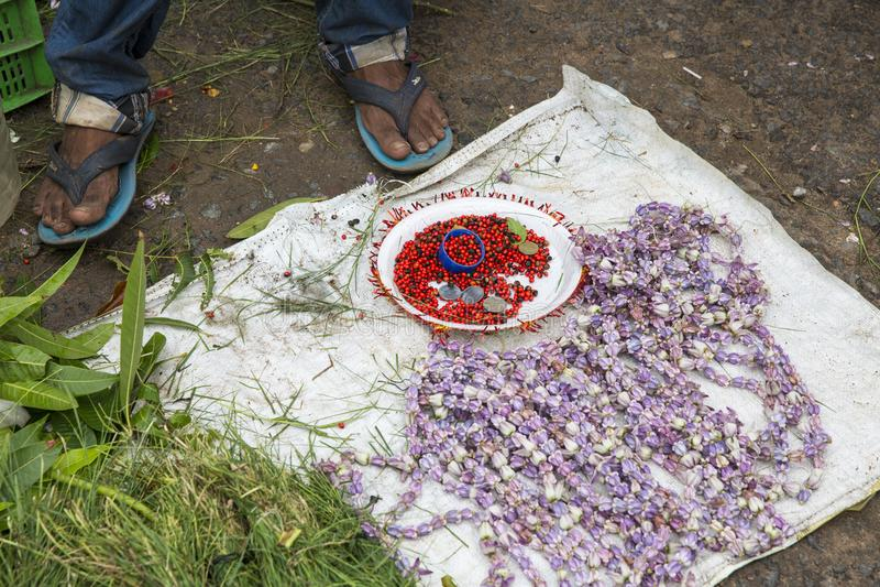 卖鲜花,菜,果子,献身者的伞的供营商能保佑印度神Ganesh在地方市场上在第一天 图库摄影
