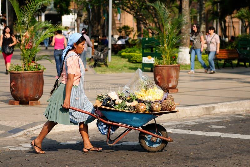 从卖从独轮车的玻利维亚的美国本地人果子在城市街道上 免版税库存图片