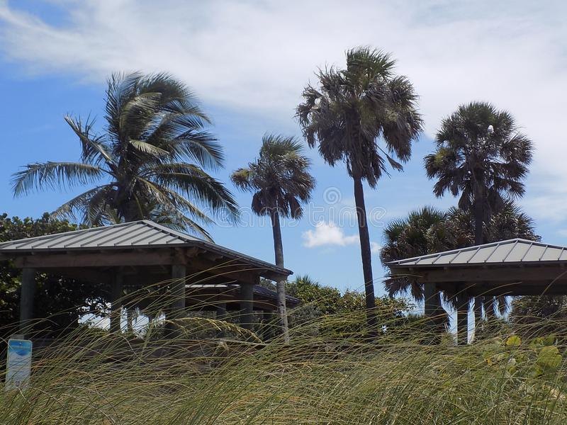 南佛罗里达海滩 图库摄影
