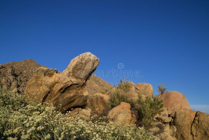 南加州,美国风景 库存照片