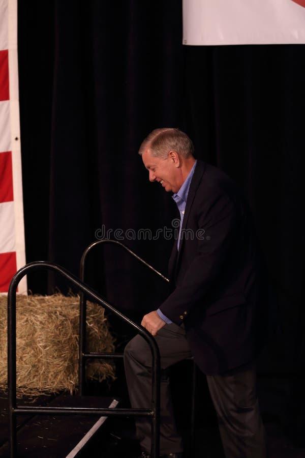 从南卡罗来纳的美国林赛格雷姆参议员, 免版税图库摄影