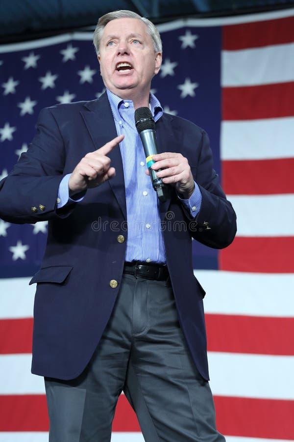 从南卡罗来纳的美国林赛格雷姆参议员, 库存图片