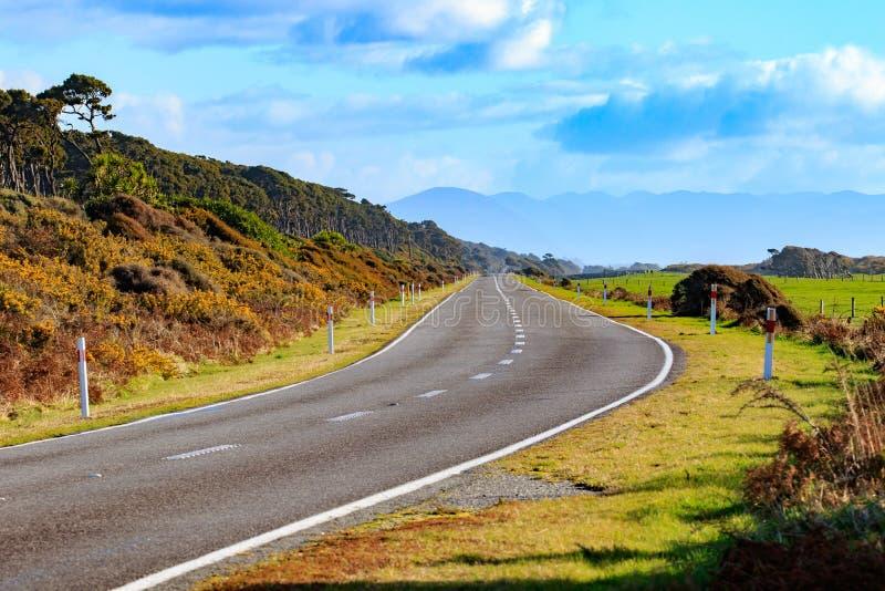 南岛新西兰几乎路视图布鲁斯海湾西海岸  免版税库存图片