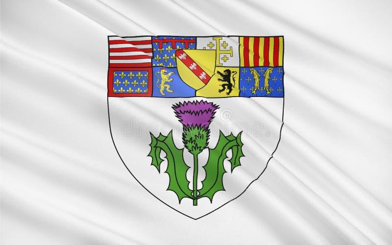 南希,法国旗子  皇族释放例证