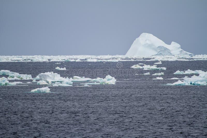 南极洲-浮动冰-全球性变暖 库存照片
