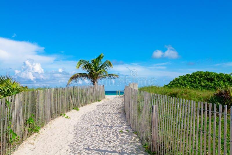 南海滩,迈阿密,佛罗里达 免版税库存照片