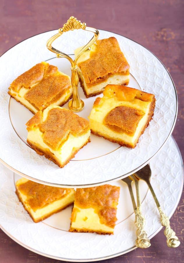 南瓜乳酪蛋糕酒吧 库存照片