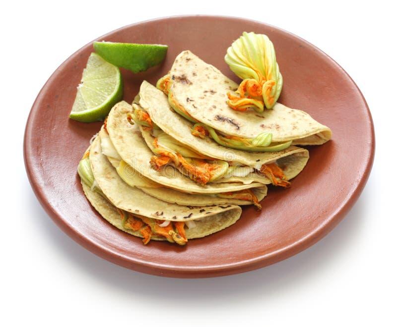 南瓜开花油炸玉米粉饼,墨西哥食物 免版税库存图片