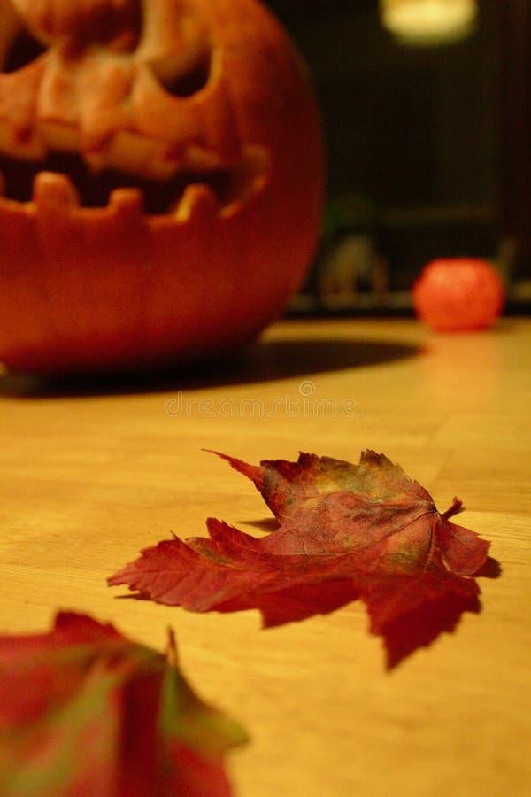 南瓜时间叶子,秋天,舒适感恩震动 库存照片