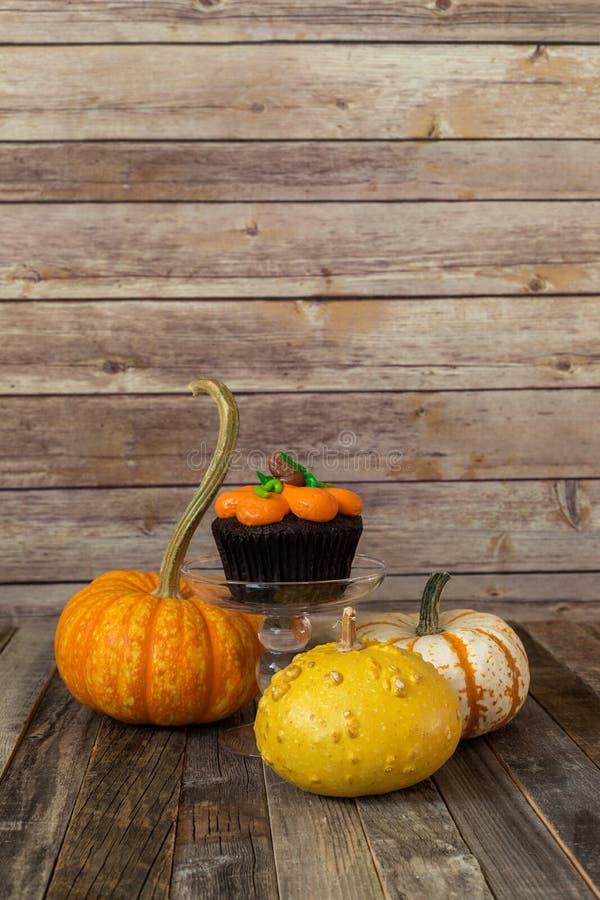 南瓜杯形蛋糕用装饰秋天金瓜 图库摄影