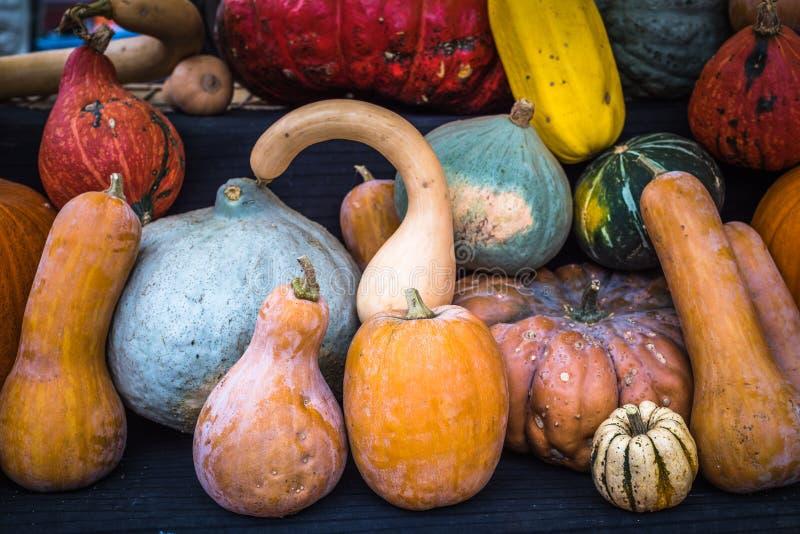 南瓜的汇集在农夫市场上 免版税库存图片
