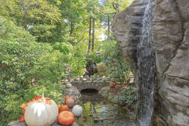 南瓜,瀑布,在岩石城市监视山的水车 免版税库存图片