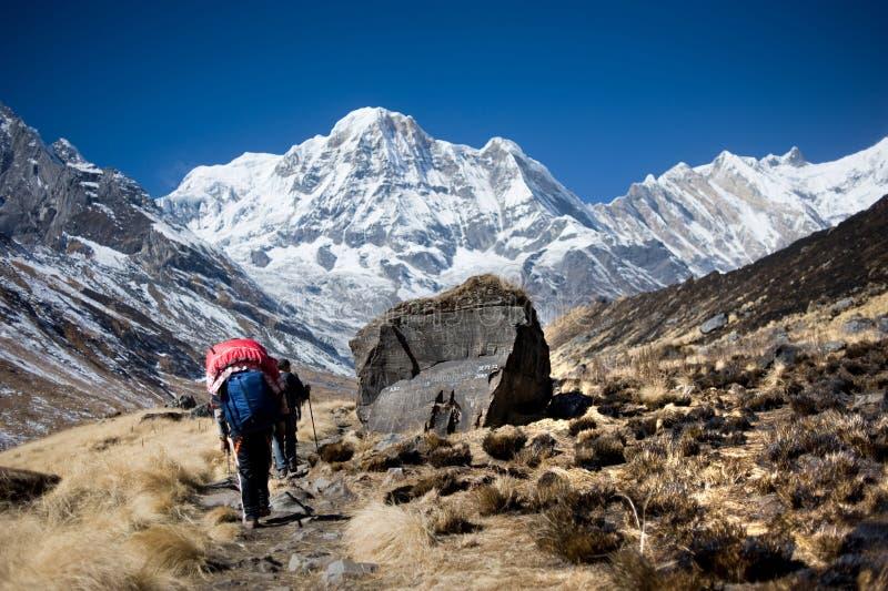 南的Annapurna,喜马拉雅山,尼泊尔 免版税图库摄影