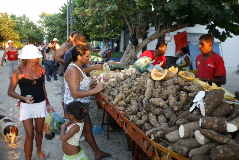 南美委内瑞拉LOS ROQUES海岛 免版税库存照片