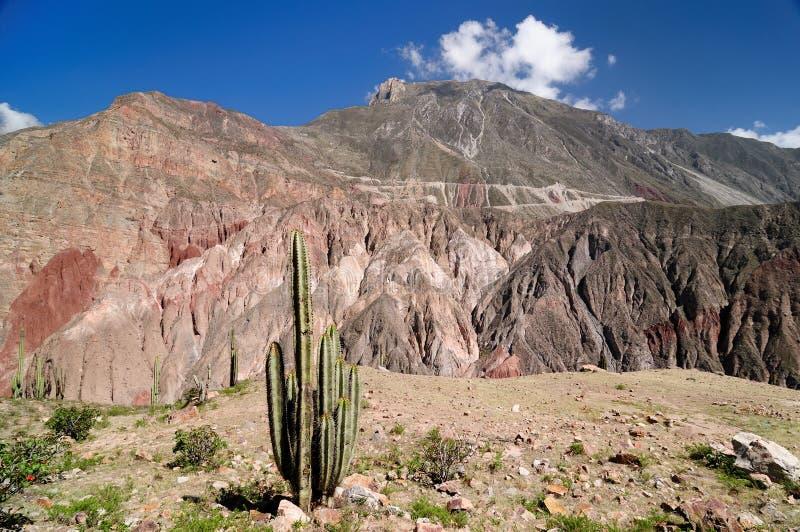 南美最有趣的地方,峡谷Cotahuasi 免版税图库摄影