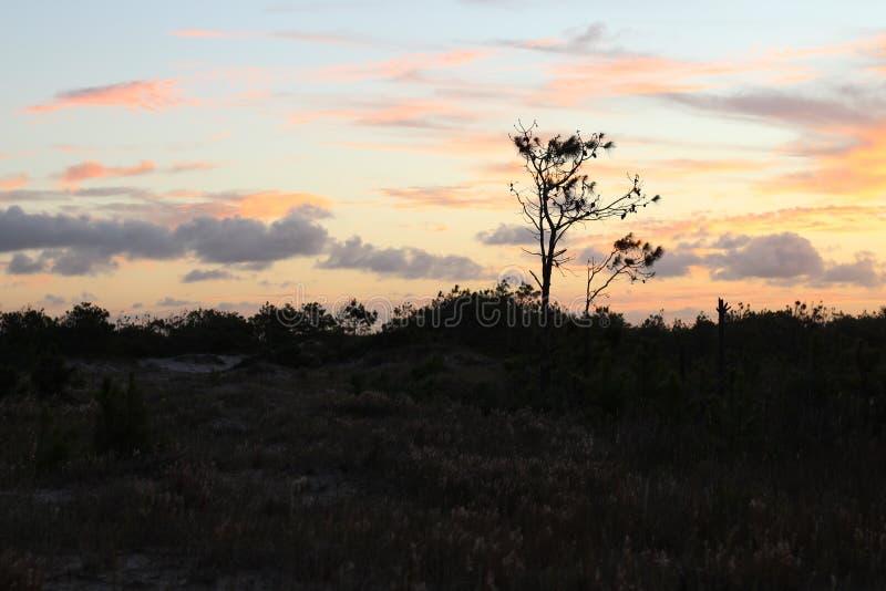 南美海岸视图在最后天的 库存图片
