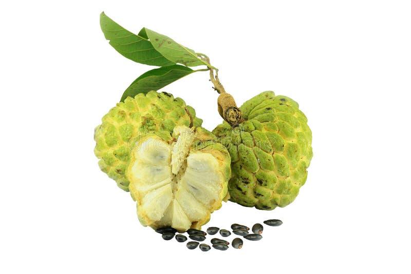 南美番荔枝在白色背景的果子孤立 免版税库存照片
