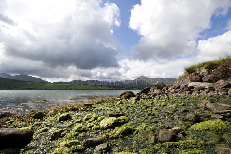 南部的爱尔兰 库存图片