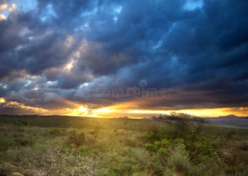南非卡鲁日落景观 库存图片