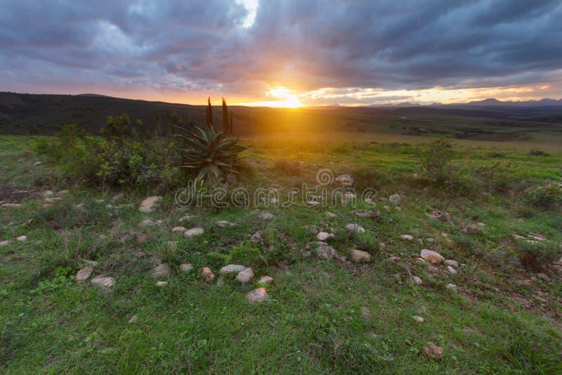 南非卡鲁日落景观 免版税库存图片