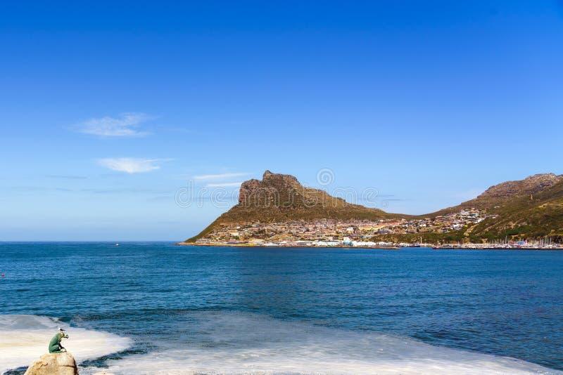 南非开普敦豪特湾铜豹雕像 复制文本的空间 免版税库存图片