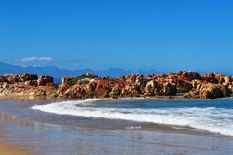 南非,庭院路线,普莱滕贝尔格海湾 免版税库存图片