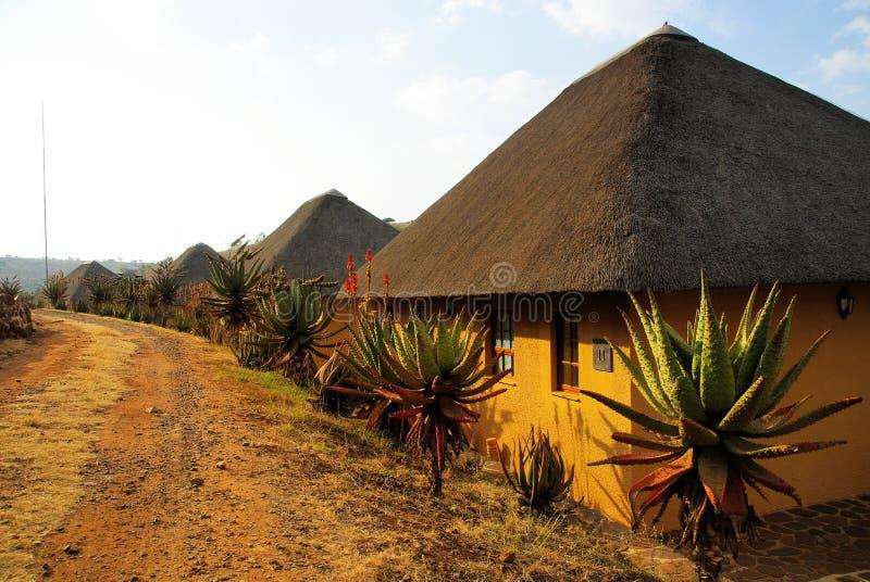 南非 库存图片